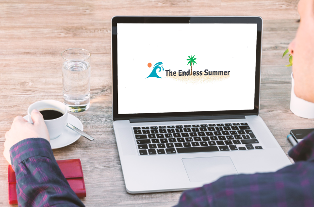 The Endless Summer Google Shopping Course